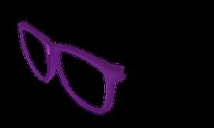 Switch Sunglasses Purple Frame