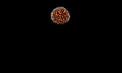 Black and orange wool pom pom
