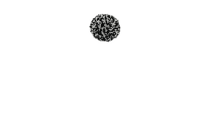Black and white wool pom pom